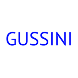 Gussini Fashion & Shoes logo